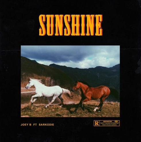 Joey-B-Sunshine-Remix-Sarkodie-Afromixx