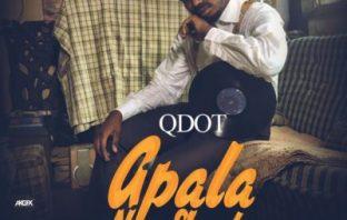 Qdot Apala New Skool Video