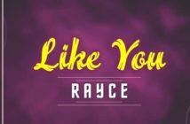 Rayce Like You Mp3