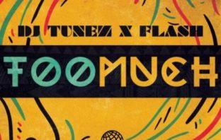 DJ Tunez X Flash - Too Much Mp3