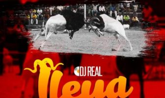 DJ Real – Ileya Fuji Mix