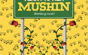 Terry Apala – Mushin (Barking by Ramz Cover) Mp3