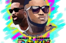 Skales Ft. Sarkodie – Body Video