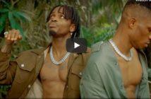Krizbeatz x Diamond Platnumz x Ceeboi – Abi Video