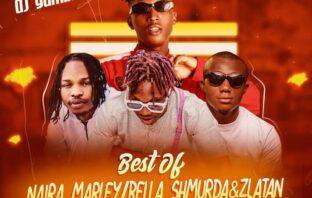 DJ Gambit - Best Of Bella Shmurda x Naira Marley & Zlatan (Cashapp 2020 Mixtape)