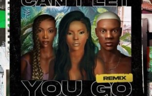 Stefflon Don – Can't Let You Go (Remix) Ft. Rema & Tiwa Savage