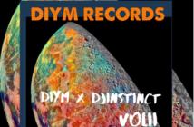 DJ Instincts – DIYM Mix Vol 2