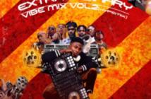DJ Salam - Extraordinary Vibes Mix